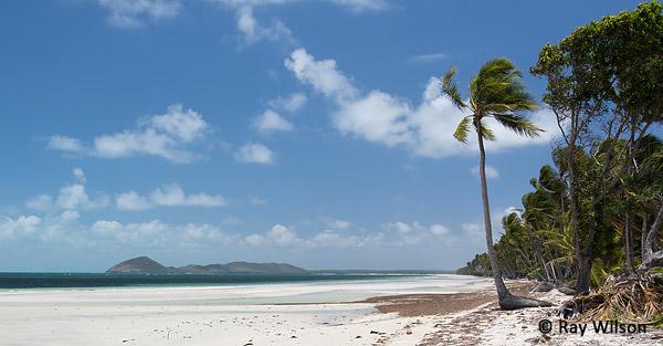 Cape York Queensland